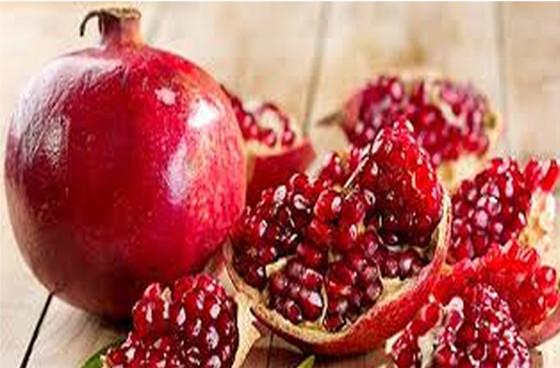 Vivaio Rosso Melograno : Vivai abagian prodotti piante da frutta frutti diversi melograno